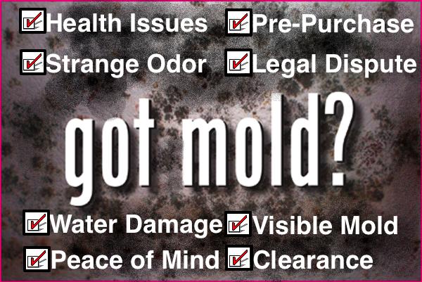 Atlanta Mold Testing